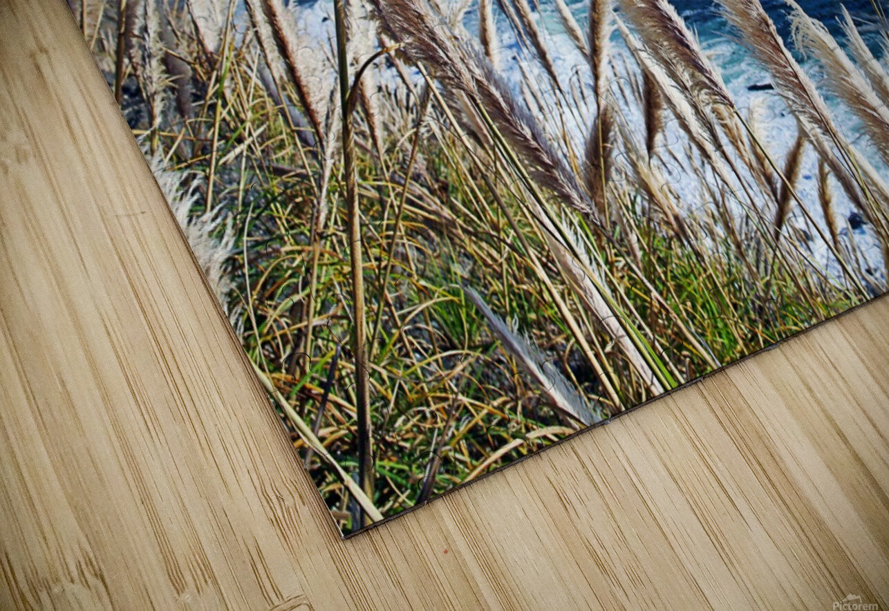 In the wind HD Sublimation Metal print