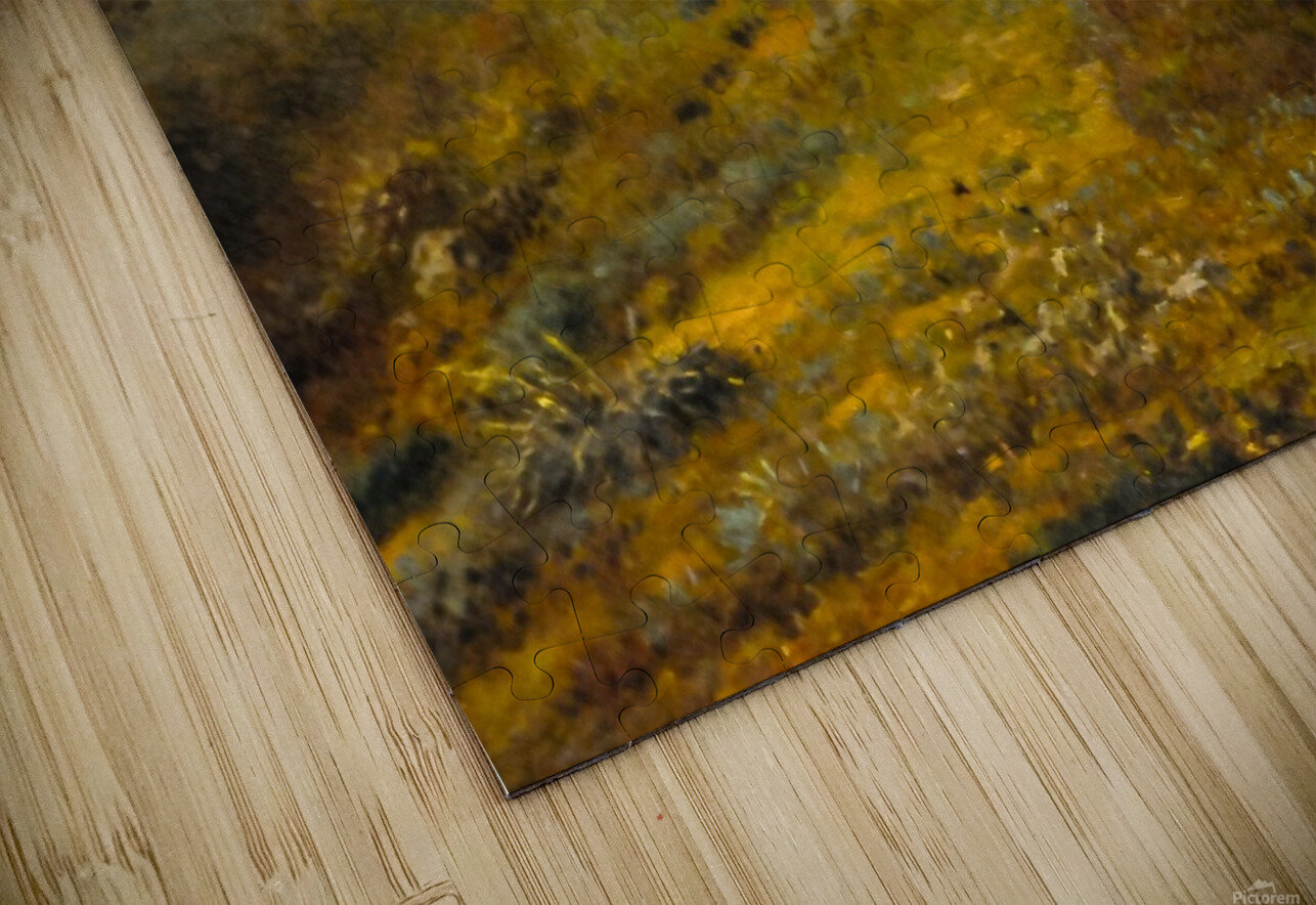 In the Auvergne HD Sublimation Metal print