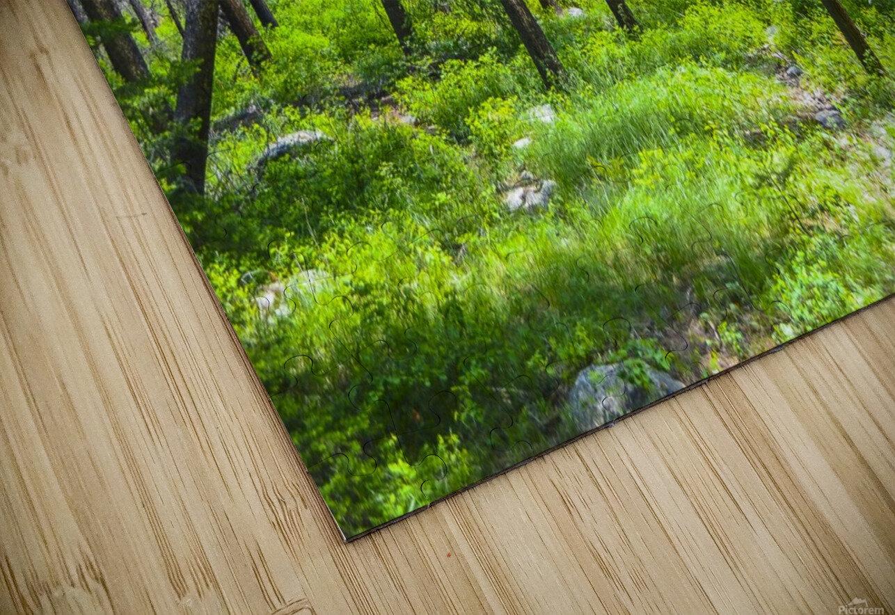 Density HD Sublimation Metal print