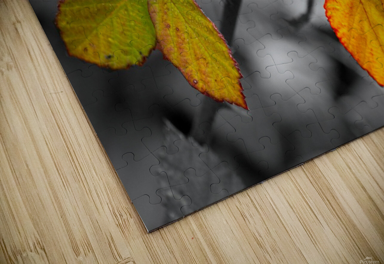 The Other HD Sublimation Metal print