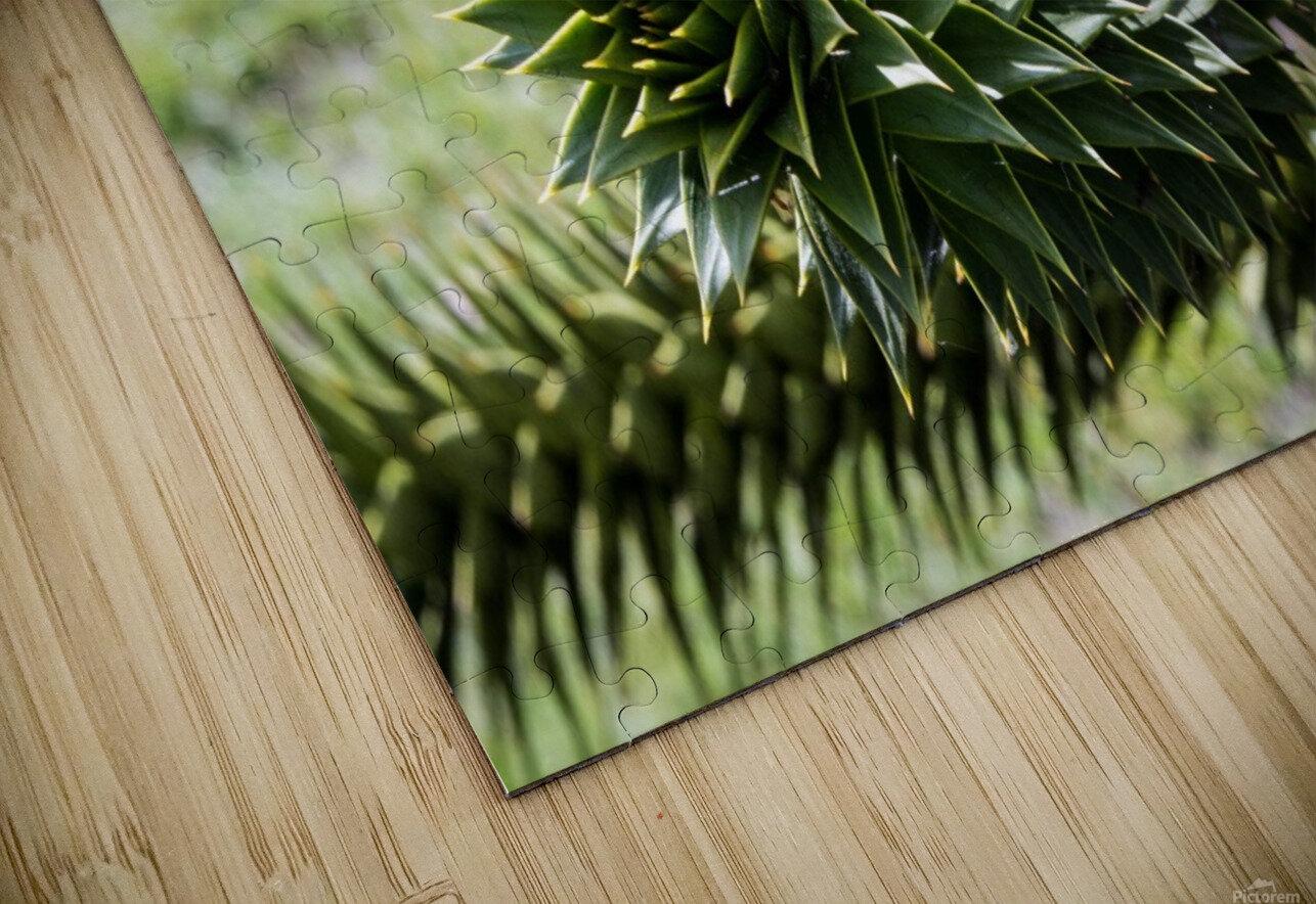 Plant Image HD Sublimation Metal print