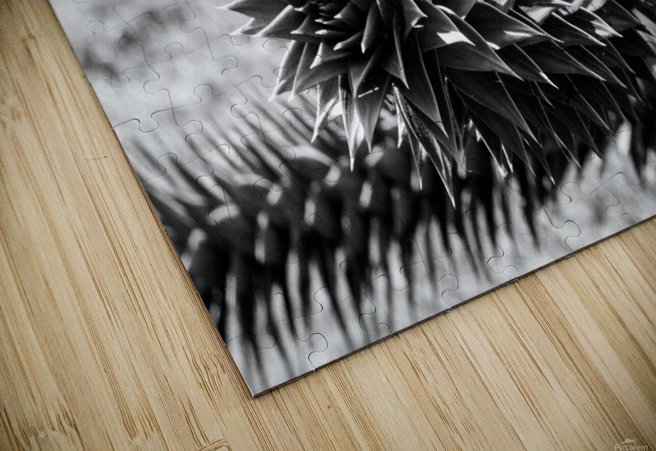 Plant Image BW HD Sublimation Metal print