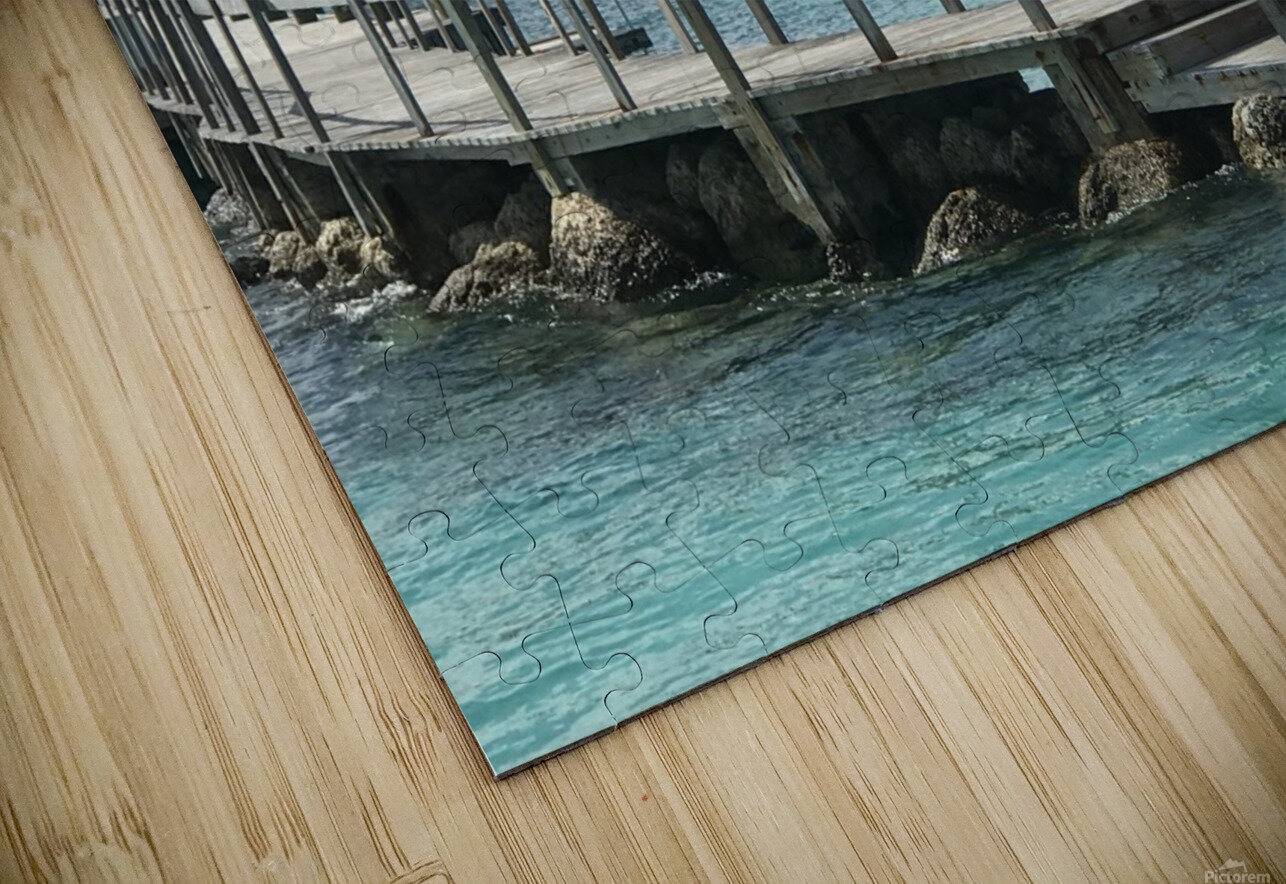 Dolphin Cove HD Sublimation Metal print