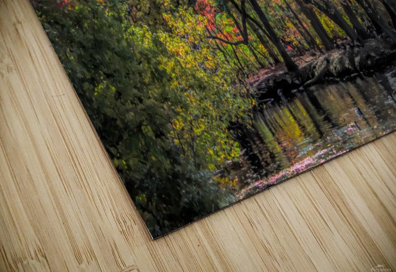 CK5L0858 studio HD Sublimation Metal print