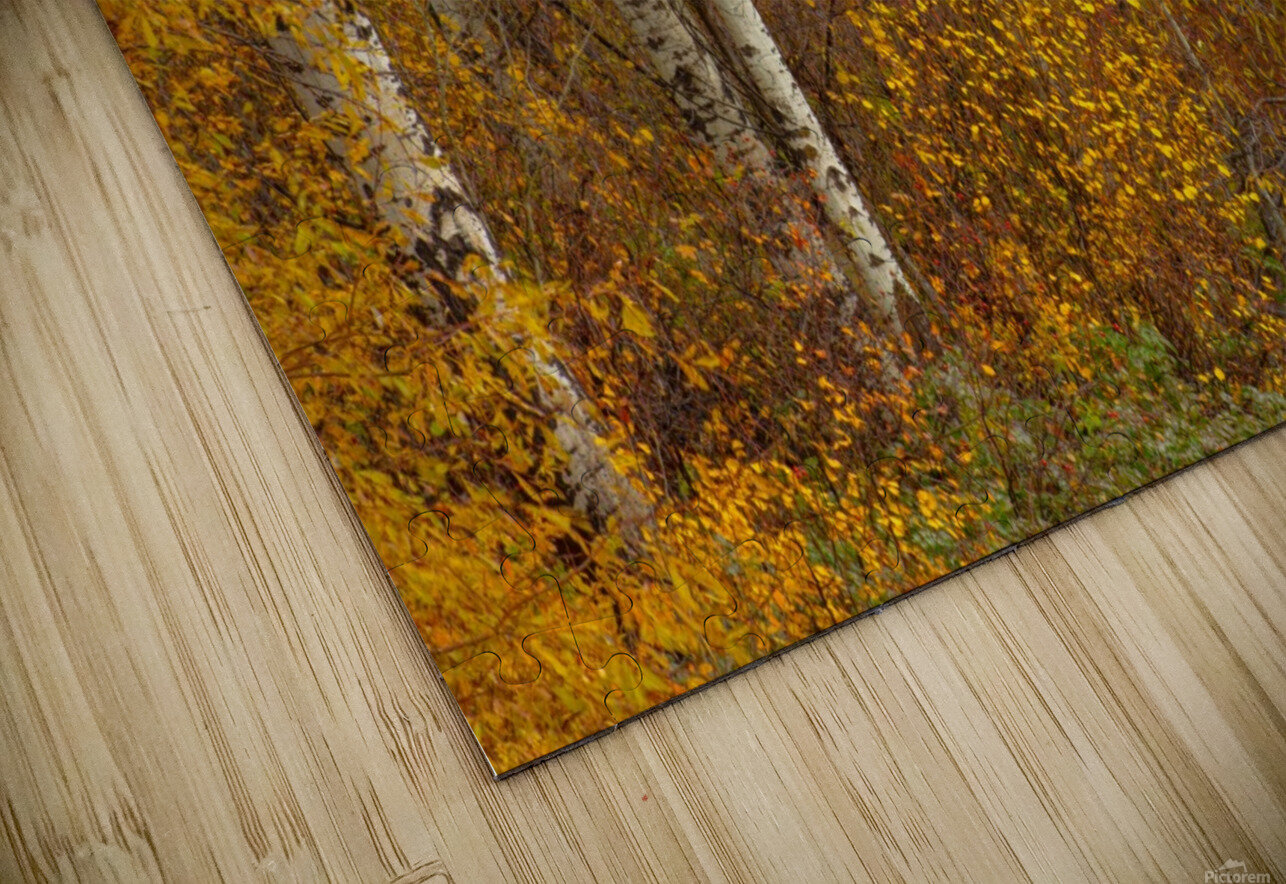Oil Painting HD Sublimation Metal print