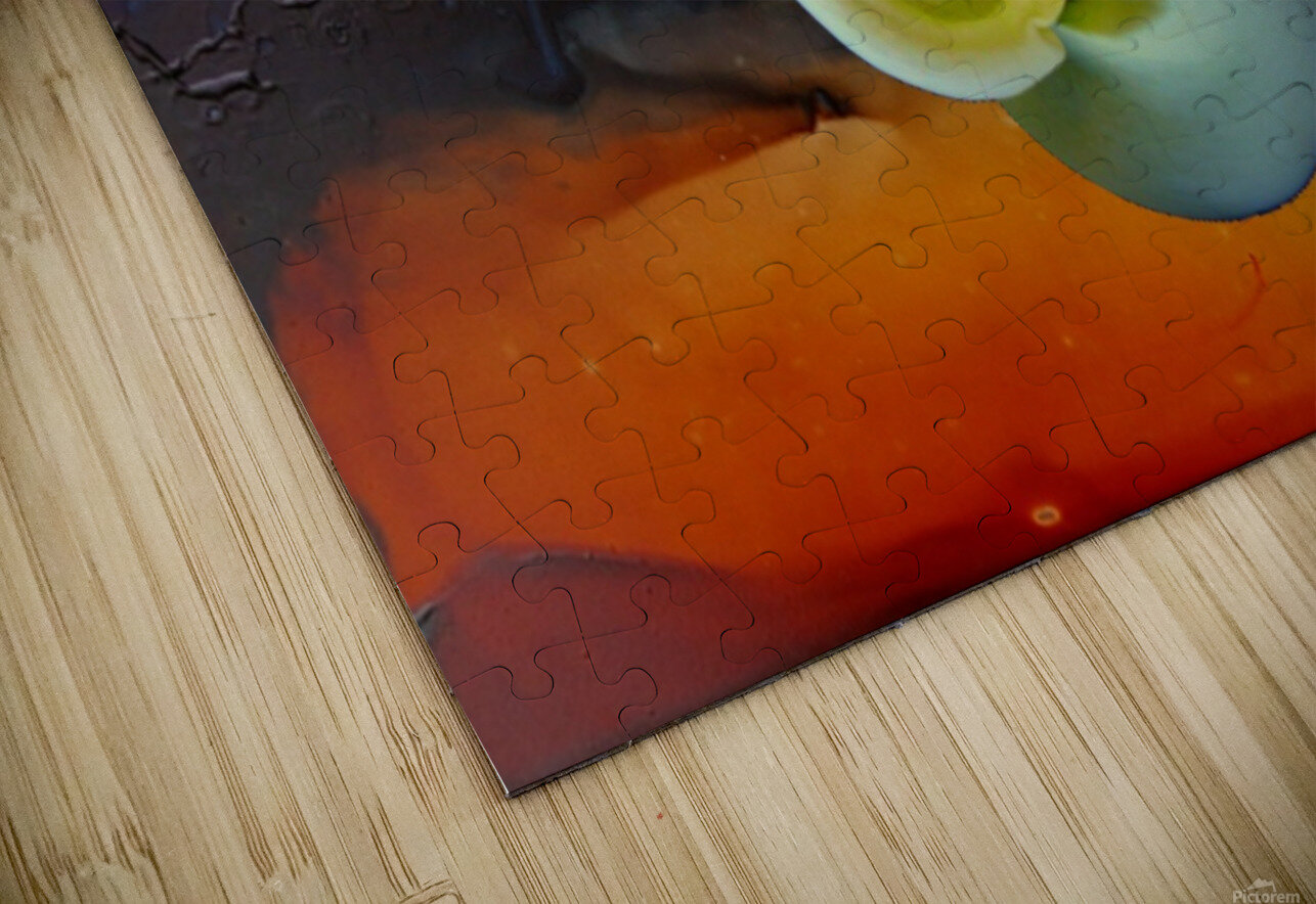 Alcohol Ink and Lily I HD Sublimation Metal print