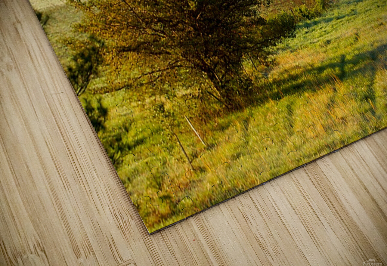 Lonely Walk HD Sublimation Metal print