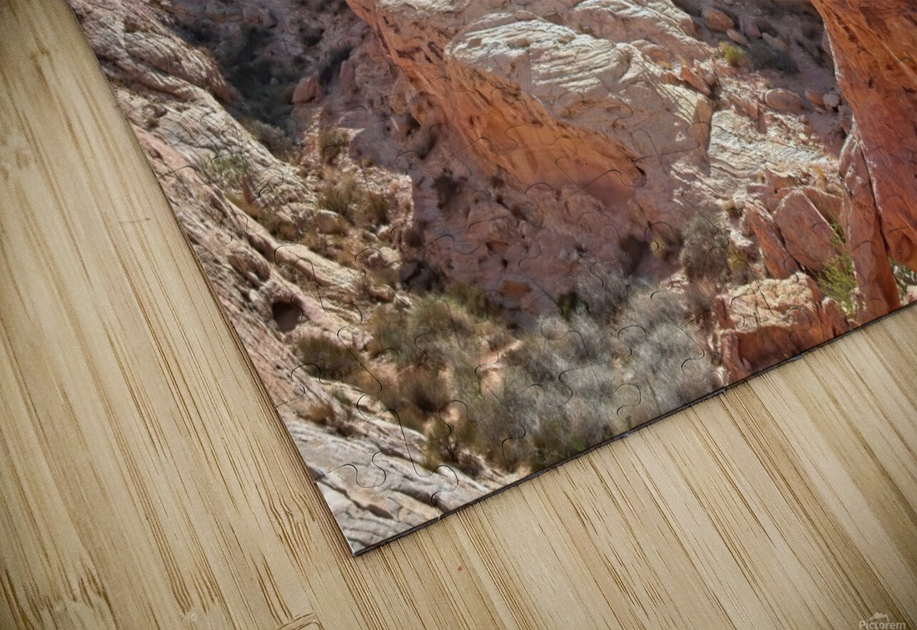 The White Domes View 2 HD Sublimation Metal print