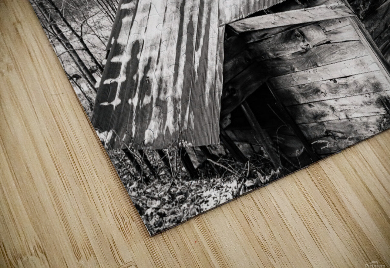 Abandoned Shack 6 HD Sublimation Metal print