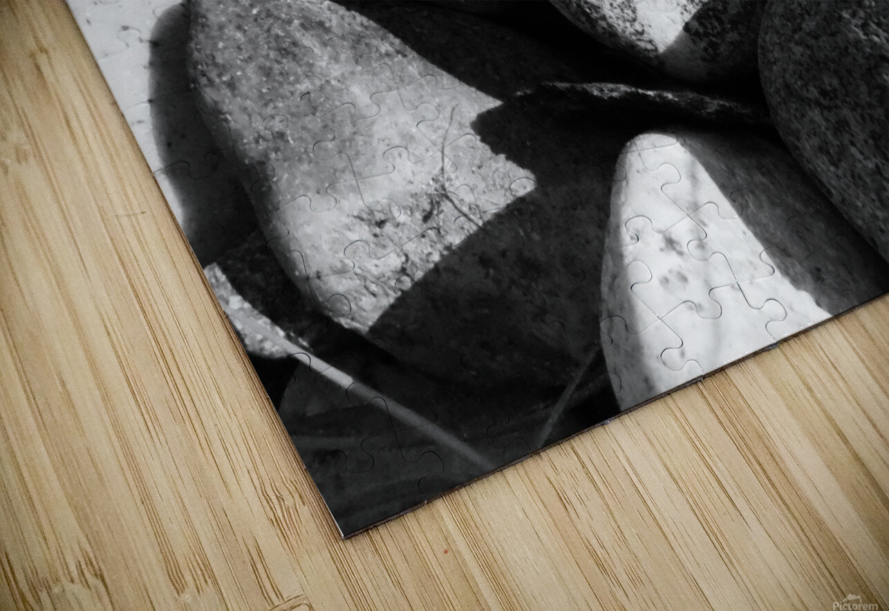 the feeling i tried to shake HD Sublimation Metal print