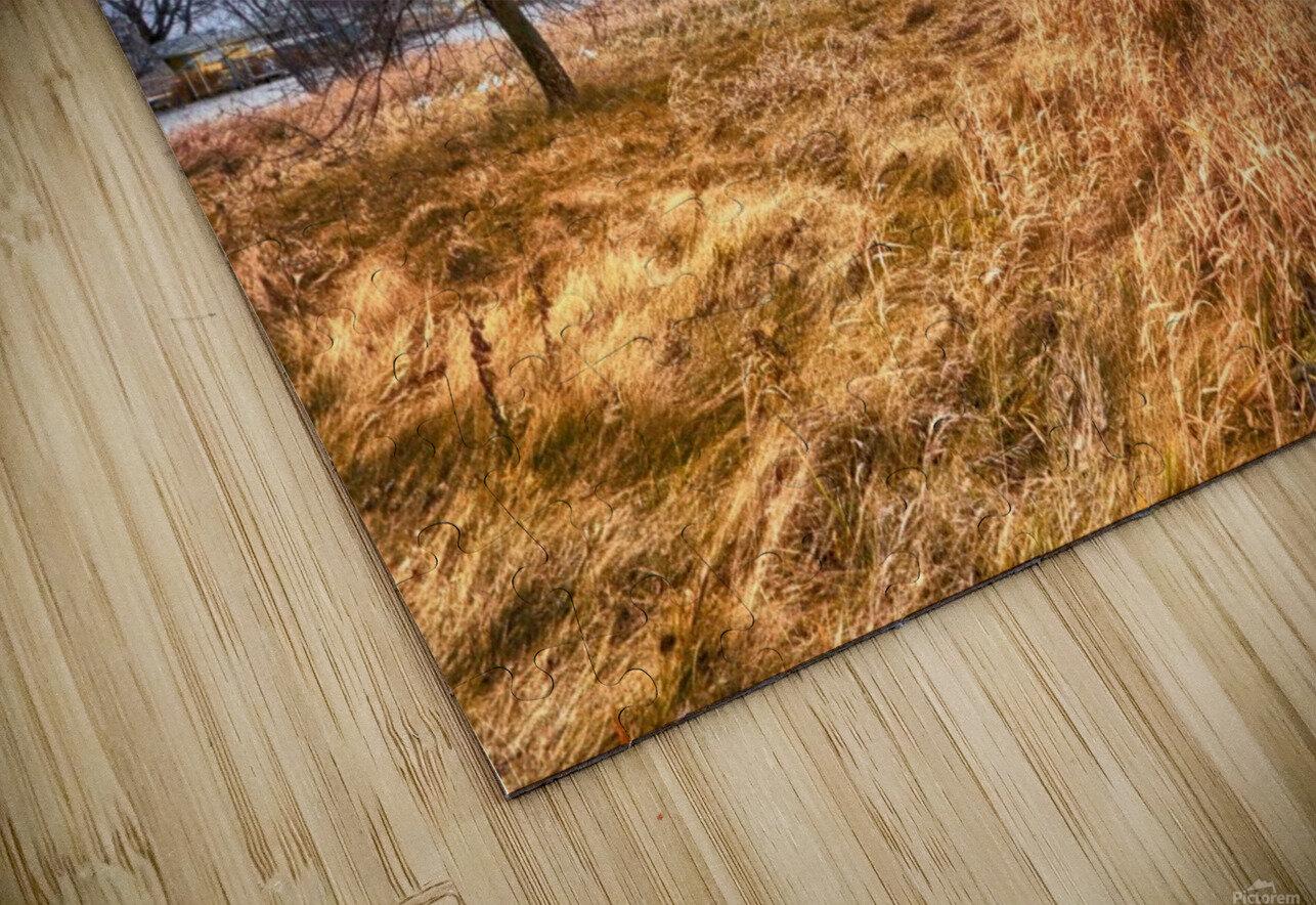 Templar Path HD Sublimation Metal print
