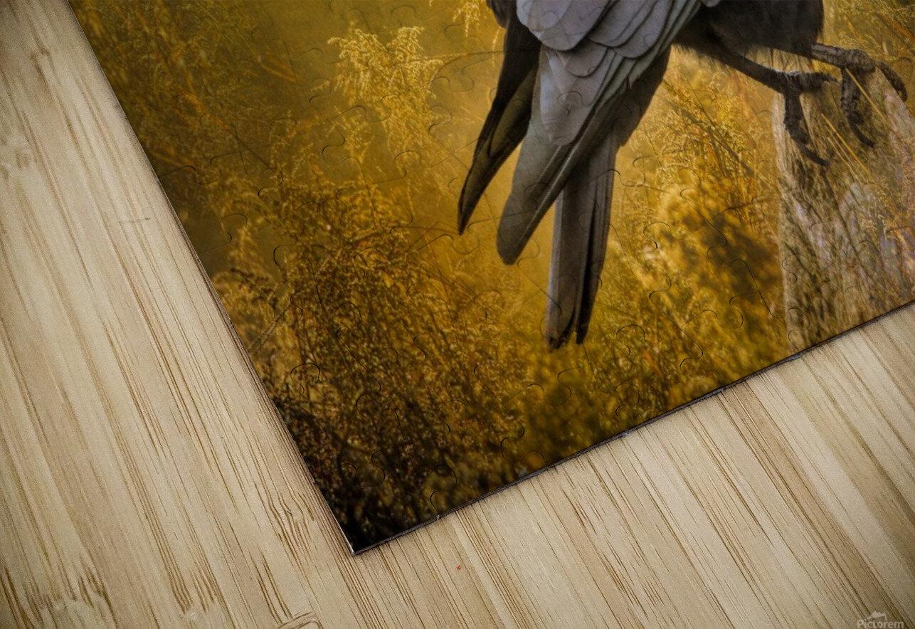 Black Crow HD Sublimation Metal print