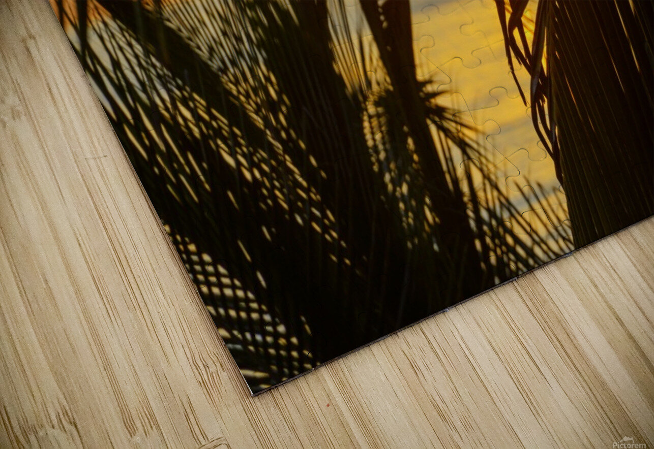 Sunrise through the palms HD Sublimation Metal print
