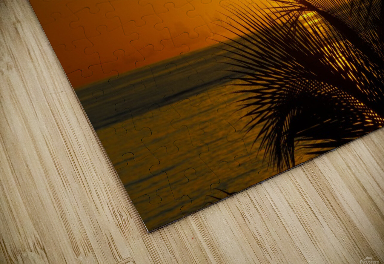 Sunrise at the palm tips HD Sublimation Metal print