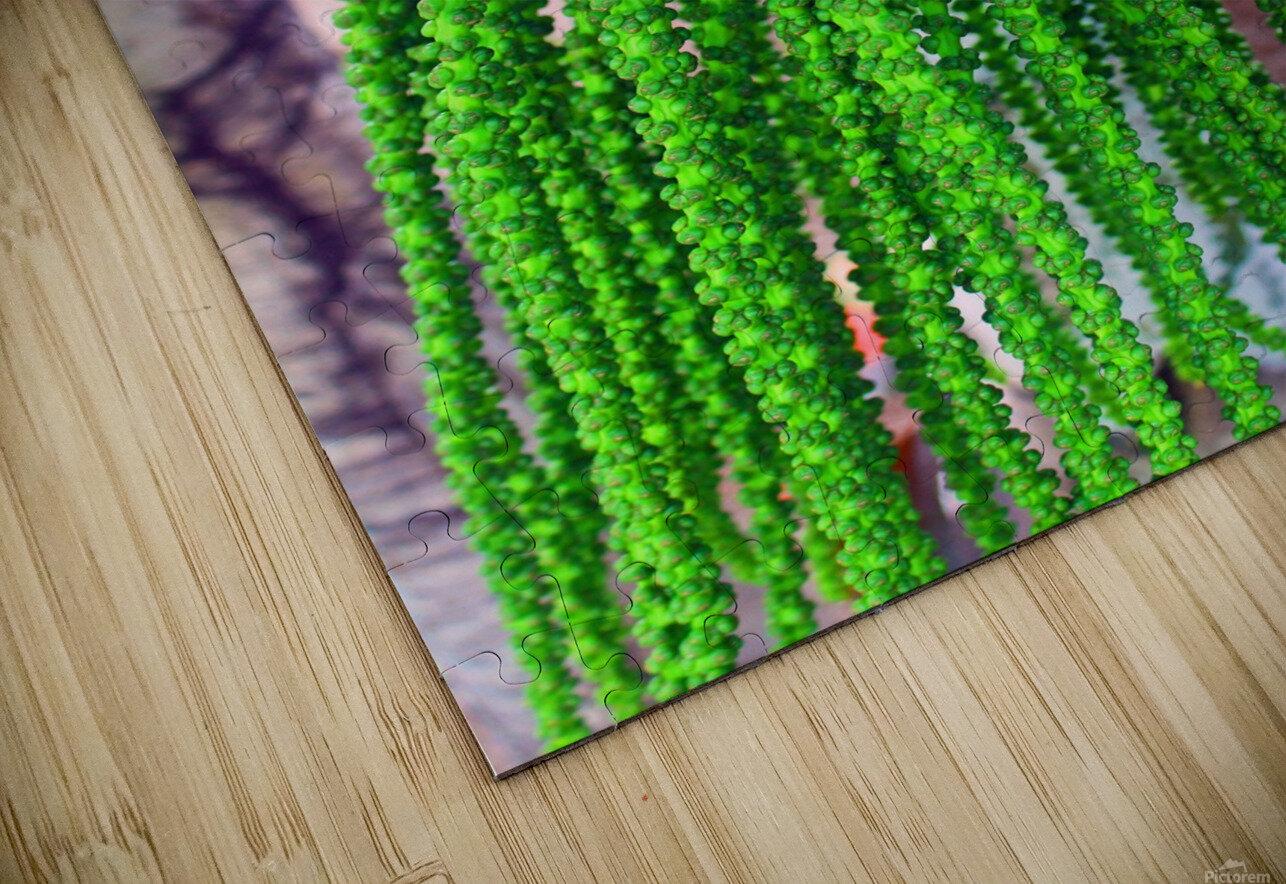 Plant Dreads HD Sublimation Metal print