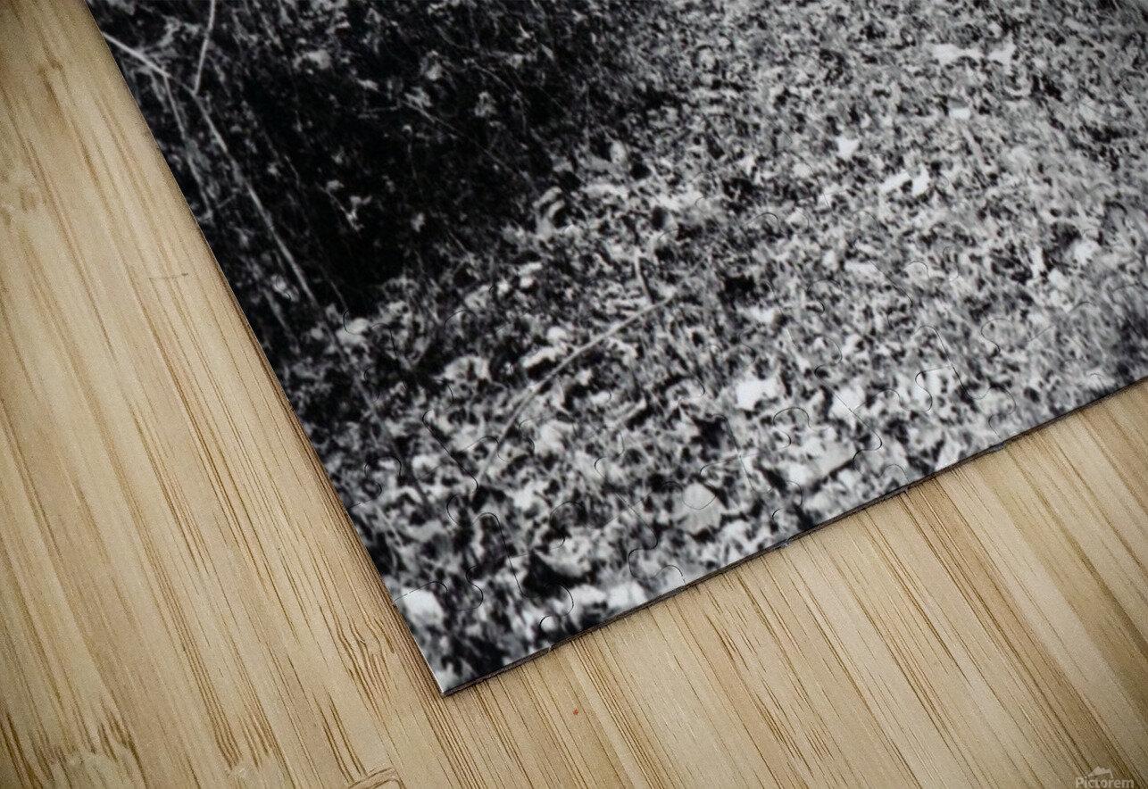 Back Driveway Superhighway HD Sublimation Metal print