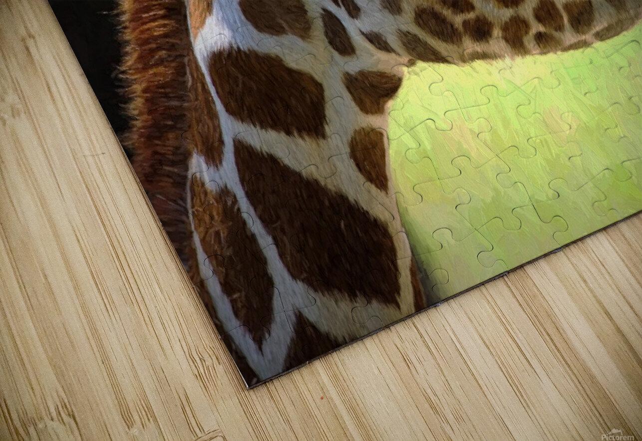 Giraffe  HD Sublimation Metal print