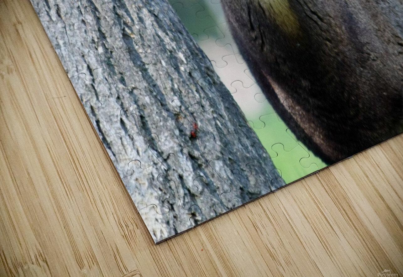 Mouflon in the Forest Portrait HD Sublimation Metal print