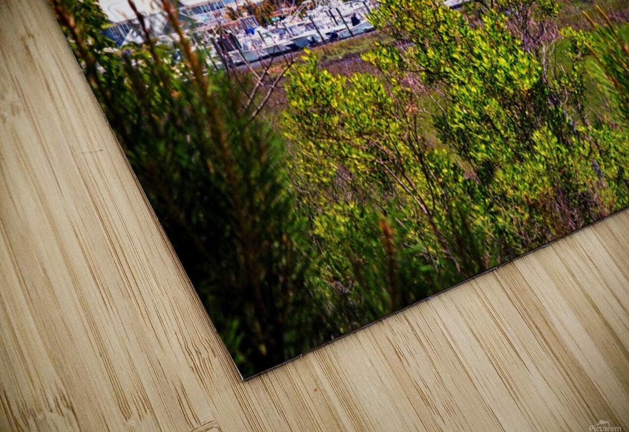 Burtons Boats and A Bridge HD Sublimation Metal print