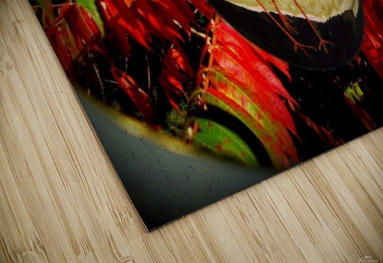 Cranes and red leaves HD Sublimation Metal print