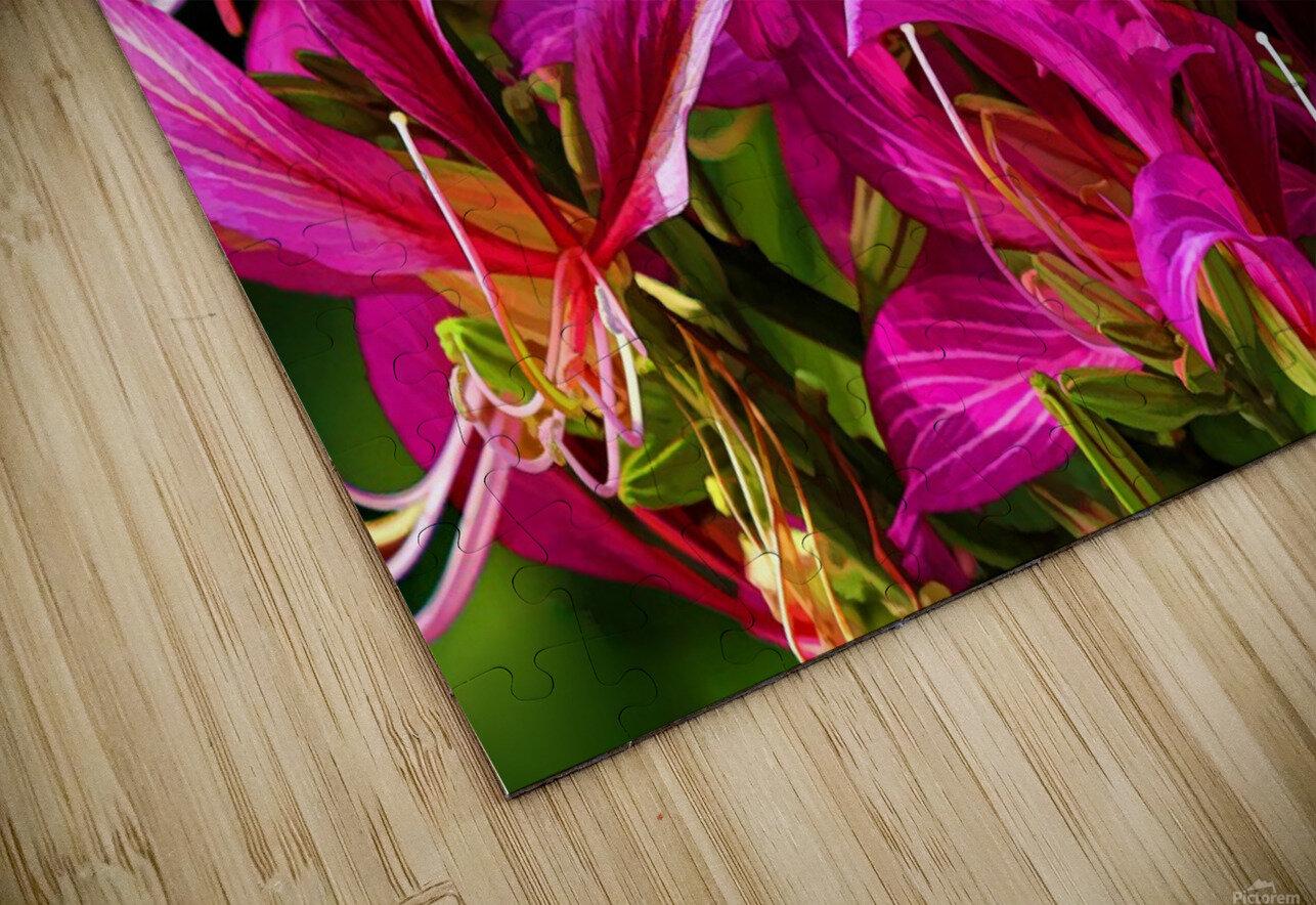 Hong Kong Orchid HD Sublimation Metal print
