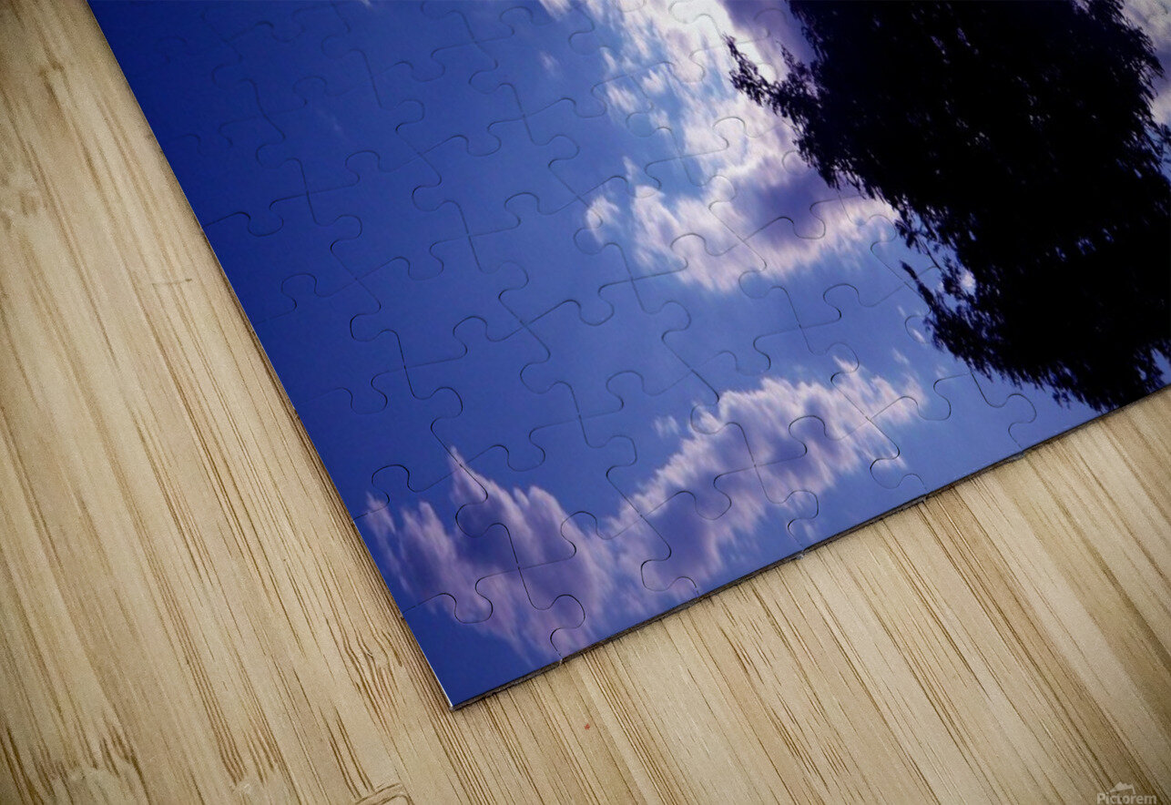 blue 2 HD Sublimation Metal print