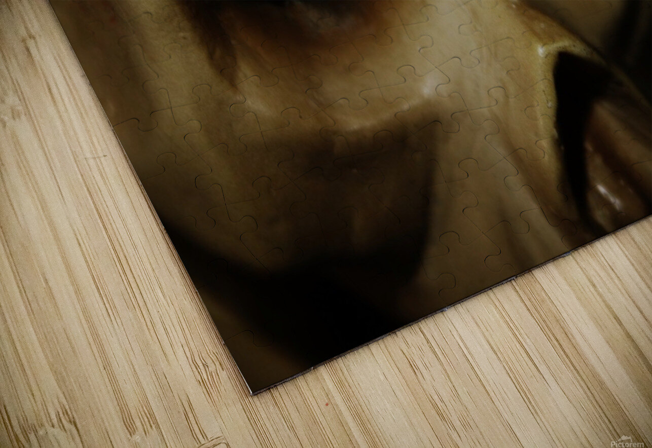 Skeleton Head HD Sublimation Metal print