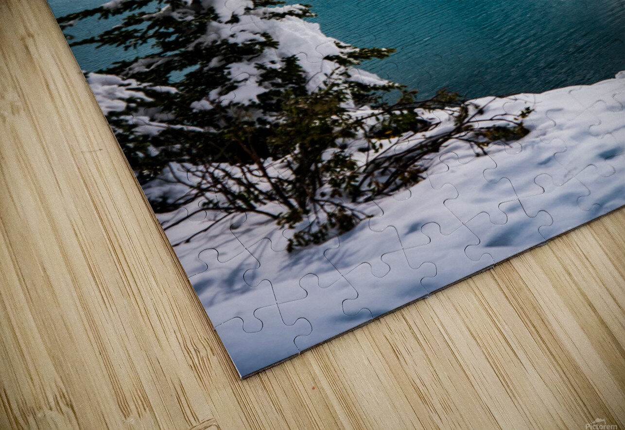 Winter Wonderland HD Sublimation Metal print