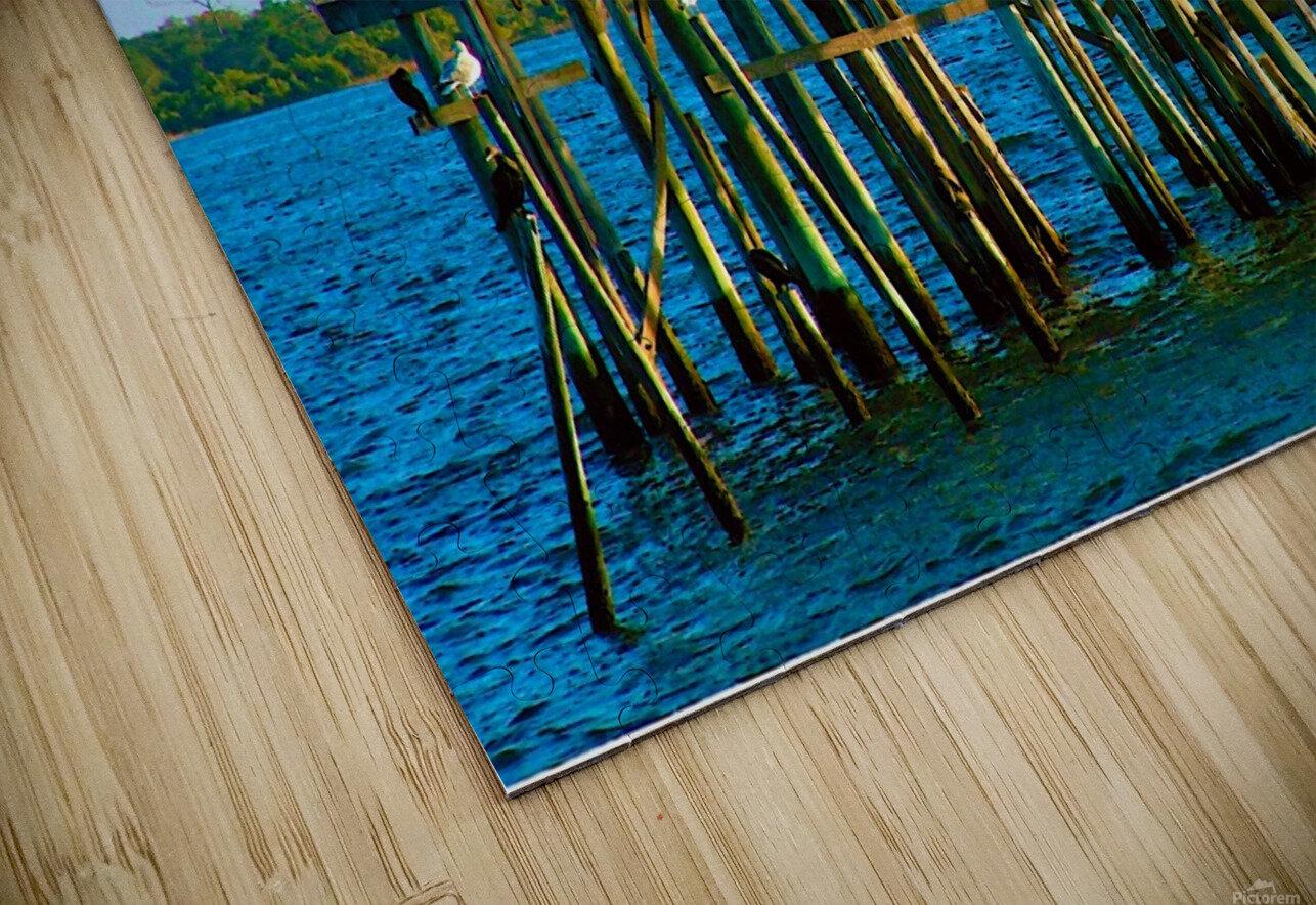 2004_0124Cedar_Key0042 HD Sublimation Metal print