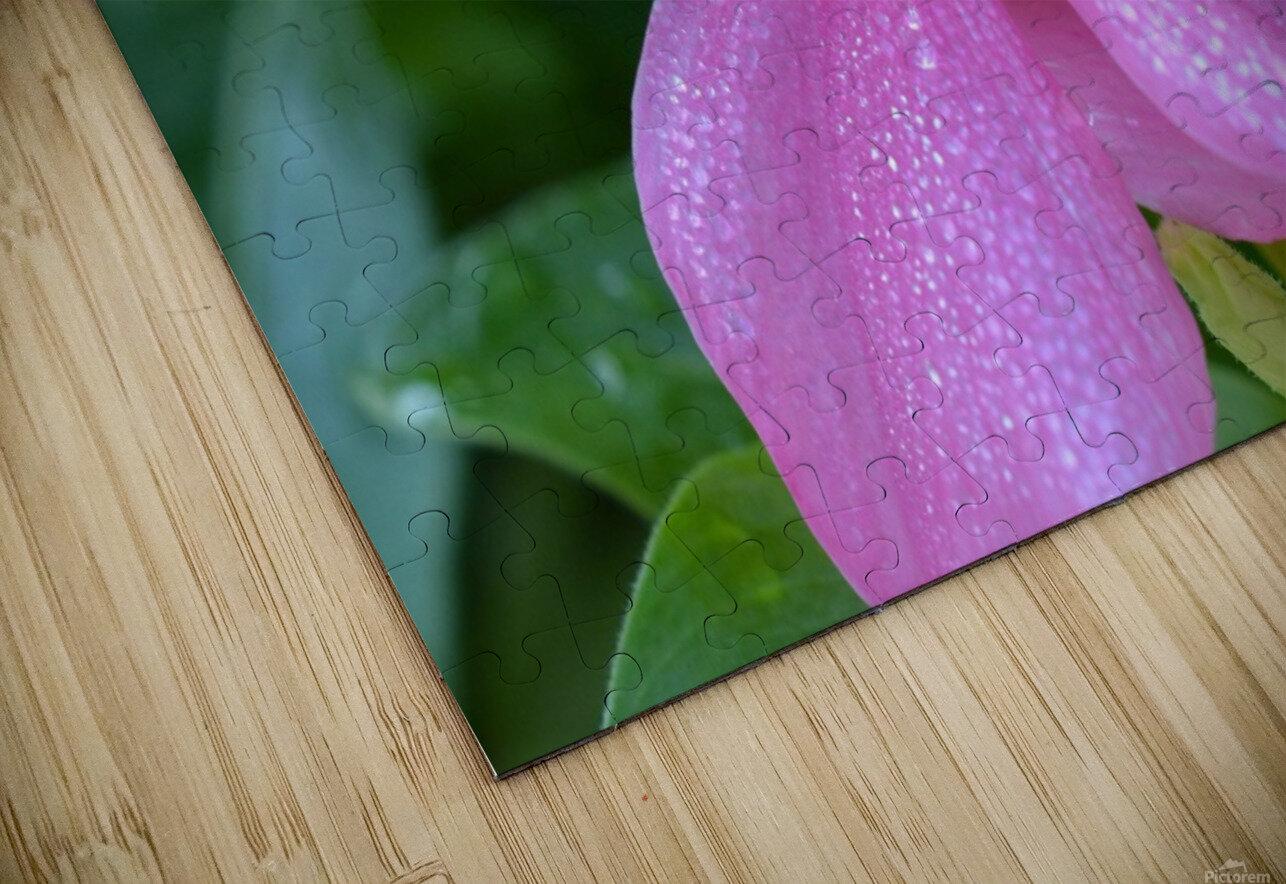 Floral Photograph  HD Sublimation Metal print