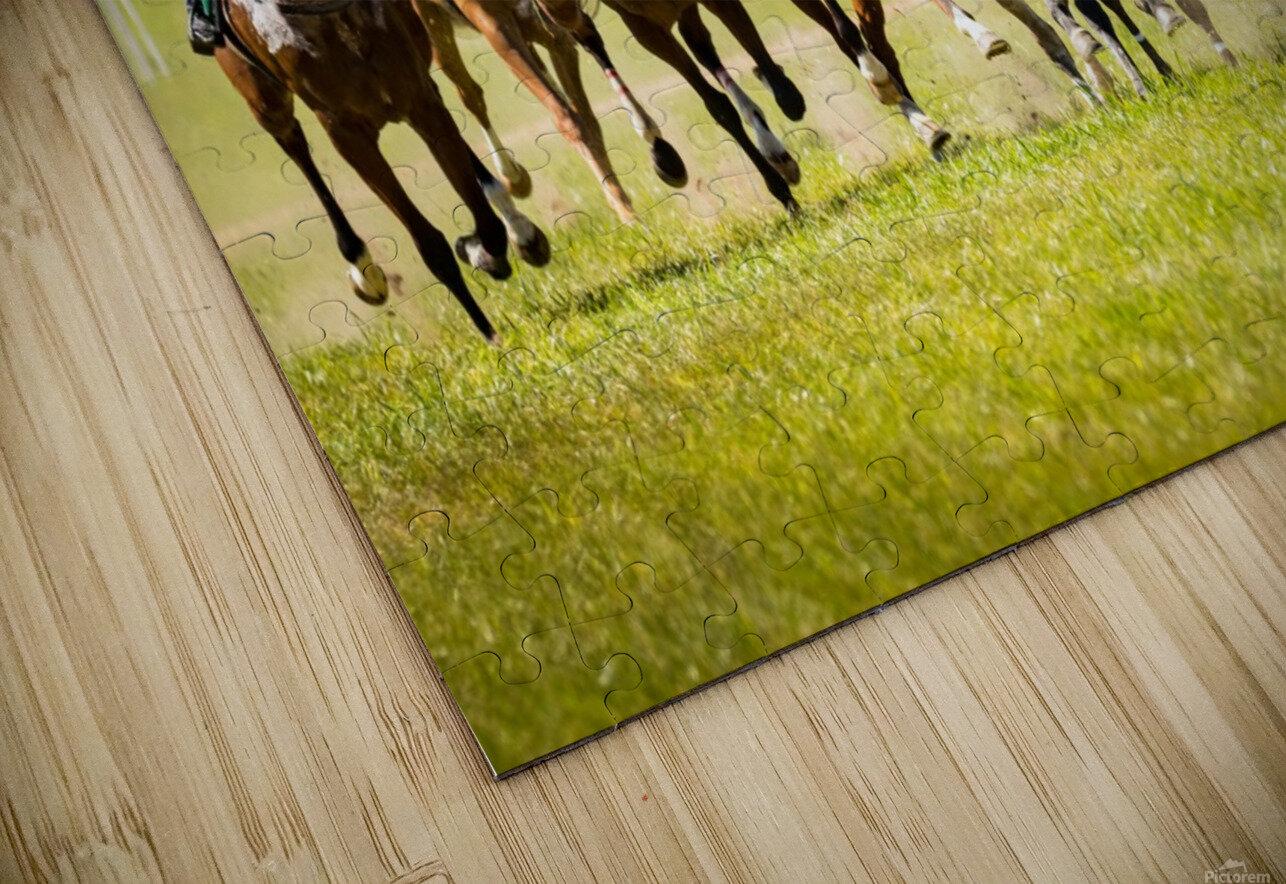 Aiken Steeplechase 4998 HD Sublimation Metal print