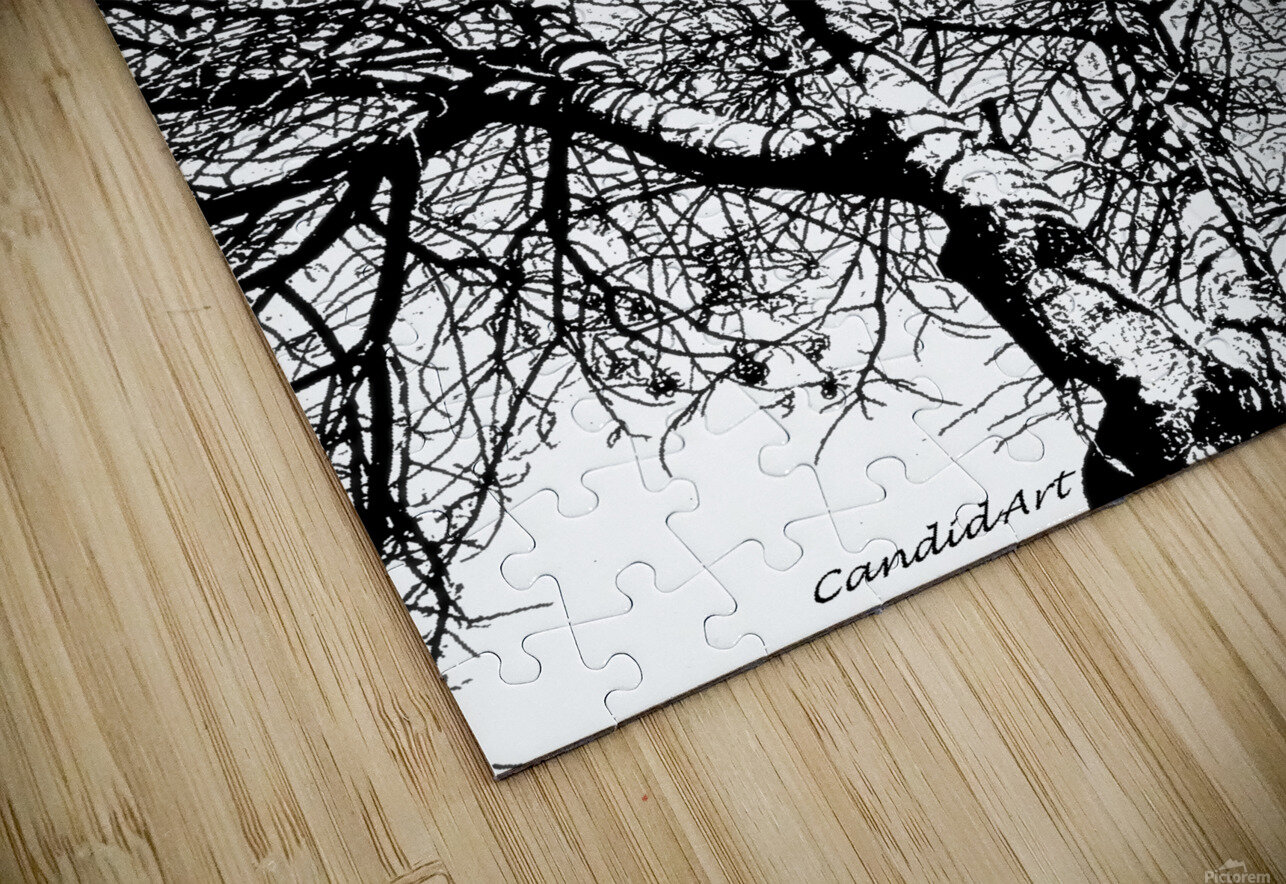 Afridaizy Black & White Trees Threshold029 HD Sublimation Metal print