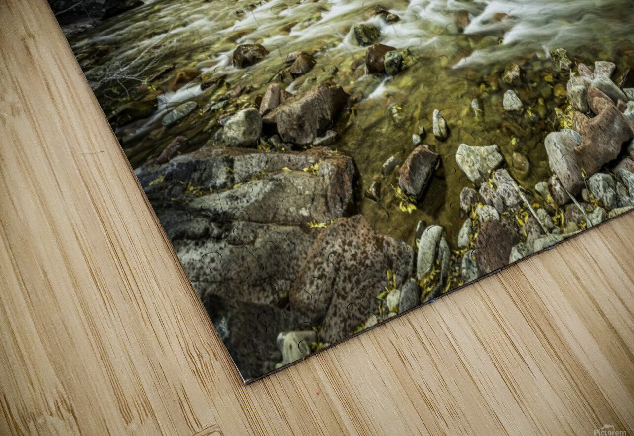 Rocky Mountain Forest HD Sublimation Metal print