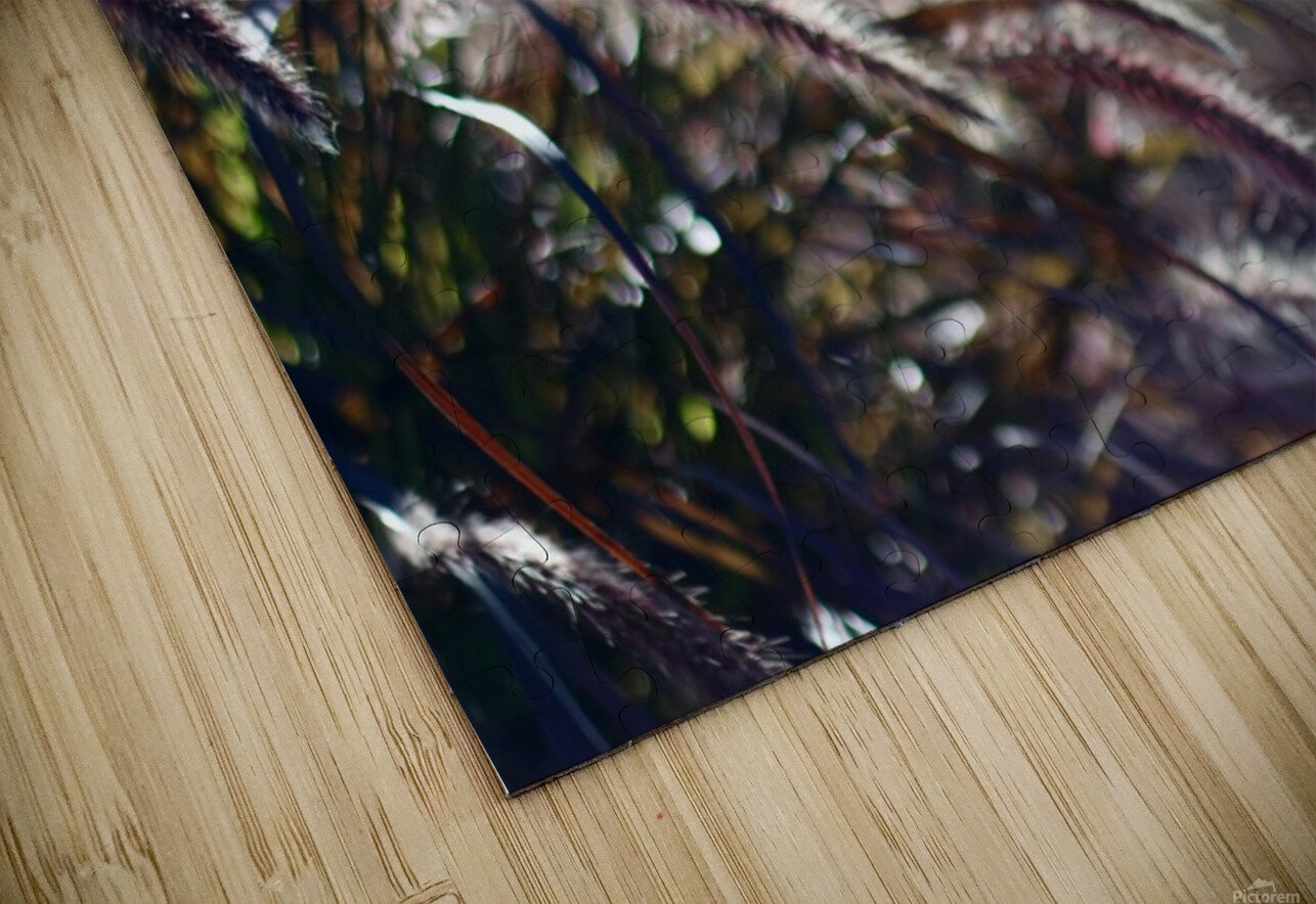 Plants HD Sublimation Metal print