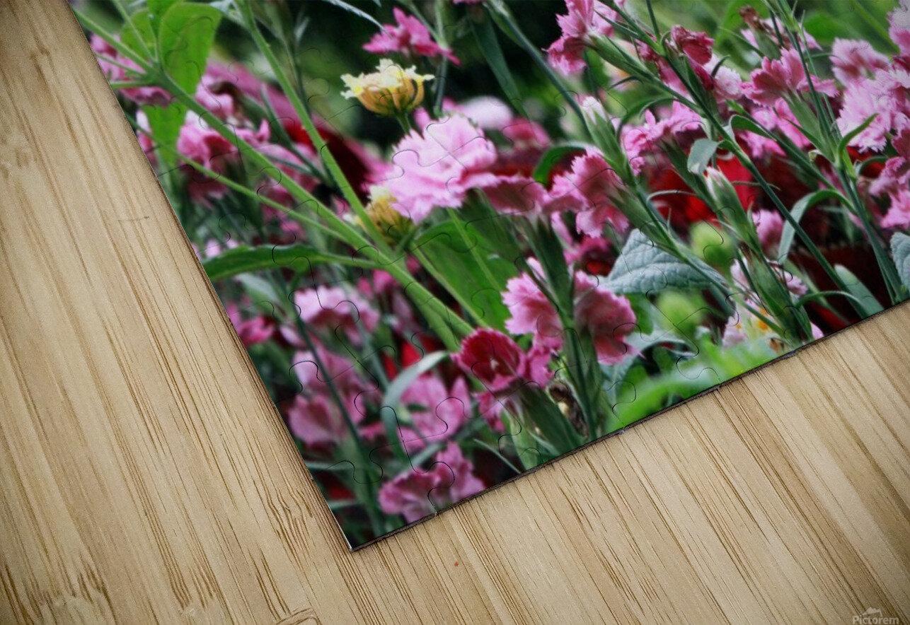 Cottage HD Sublimation Metal print