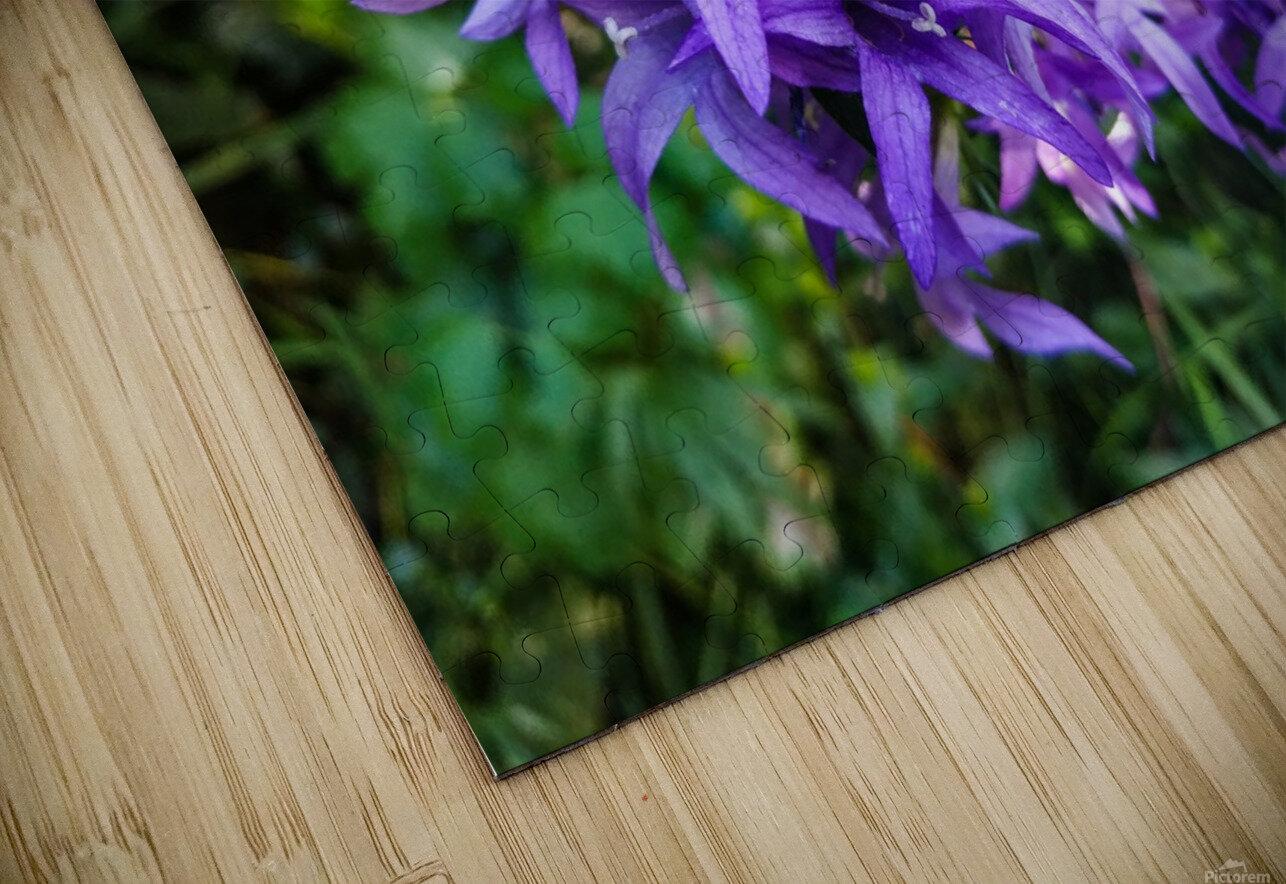Violet flowers HD Sublimation Metal print