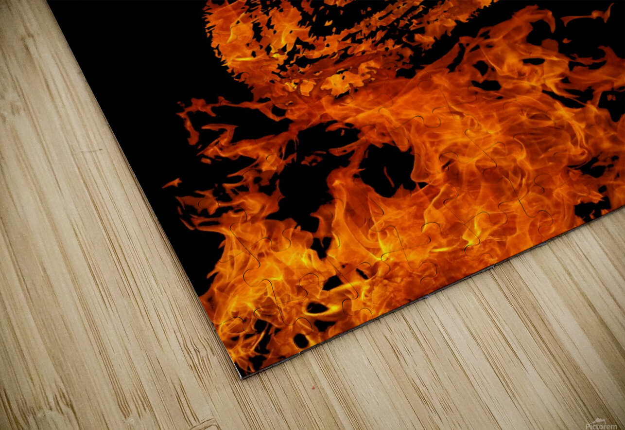 Burning on Fire Letter E HD Sublimation Metal print