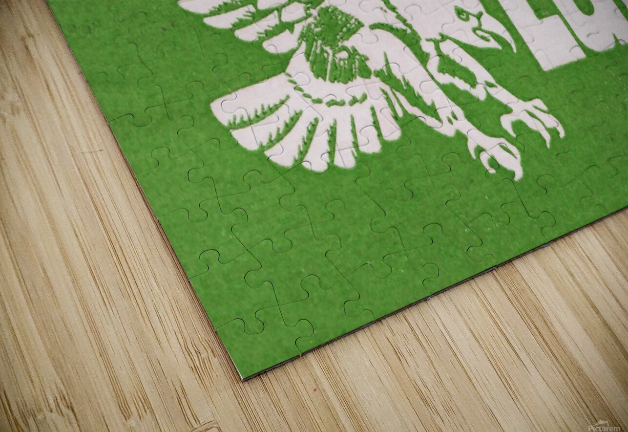 north texas state college unt eagles vintage poster college art collection HD Sublimation Metal print