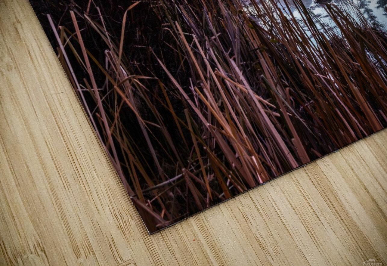 Vermilion Lakes Mist HD Sublimation Metal print