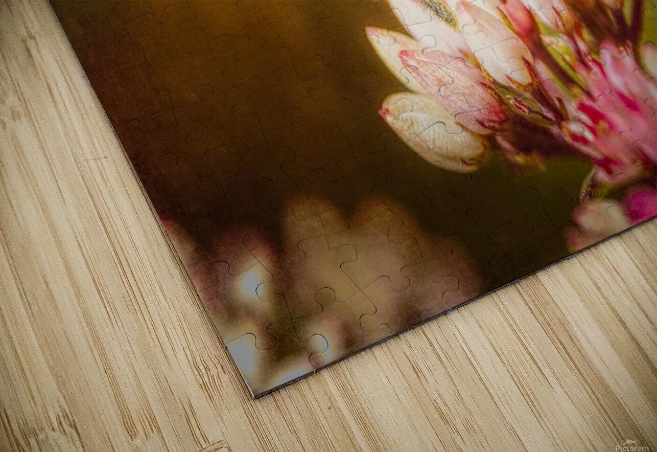 Save Us HD Sublimation Metal print