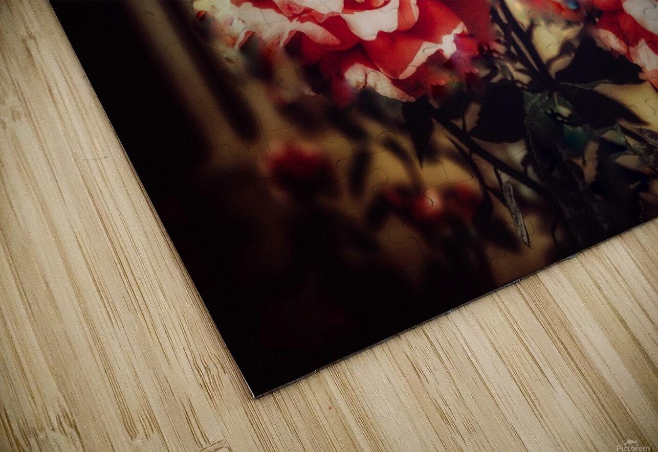 Rose HD Sublimation Metal print
