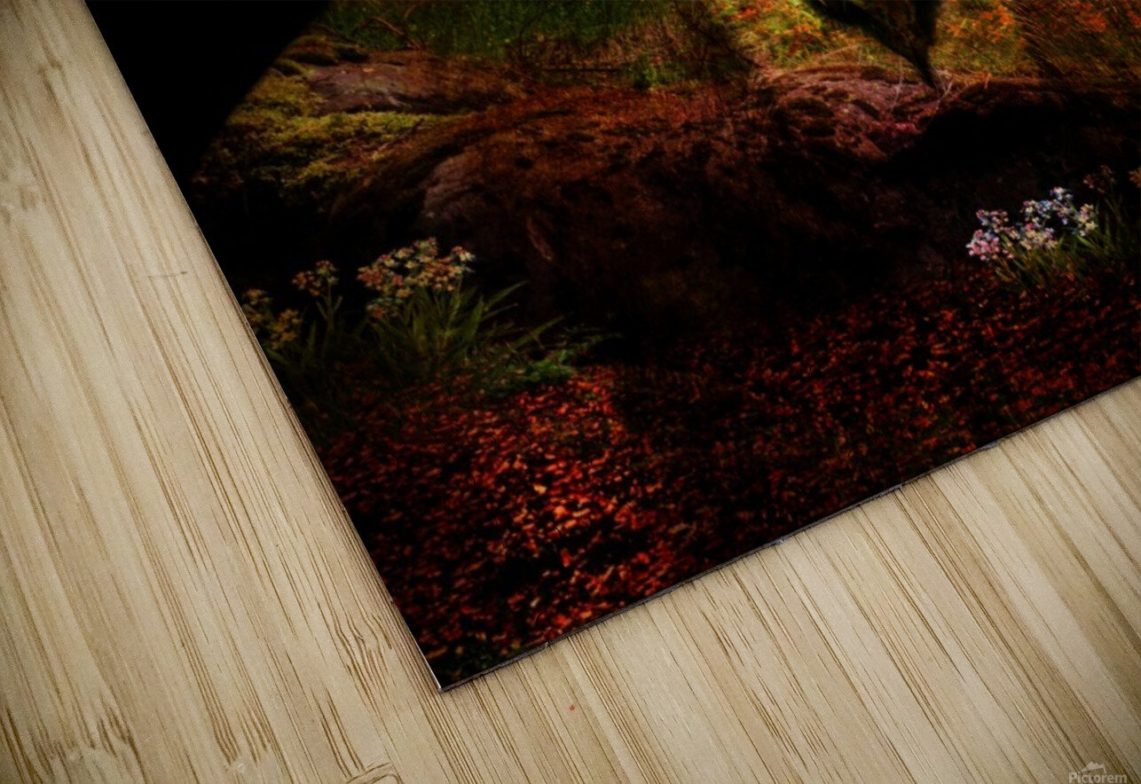 The Lion Watches HD Sublimation Metal print