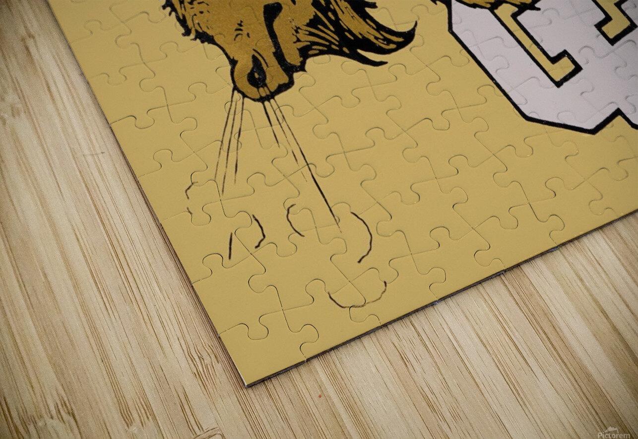 vintage cu colorado buffaloes art HD Sublimation Metal print