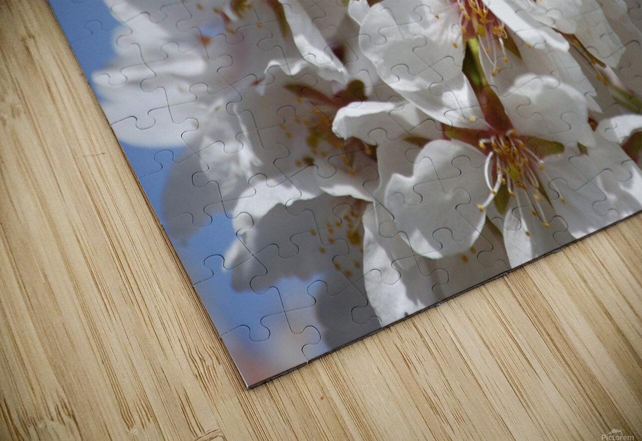 Flower Mix 09 HD Sublimation Metal print
