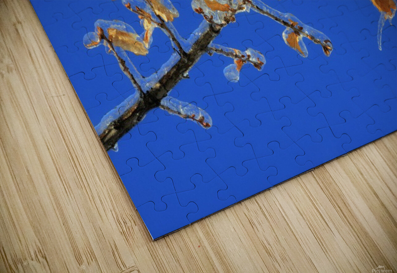 Sucreries glacees HD Sublimation Metal print