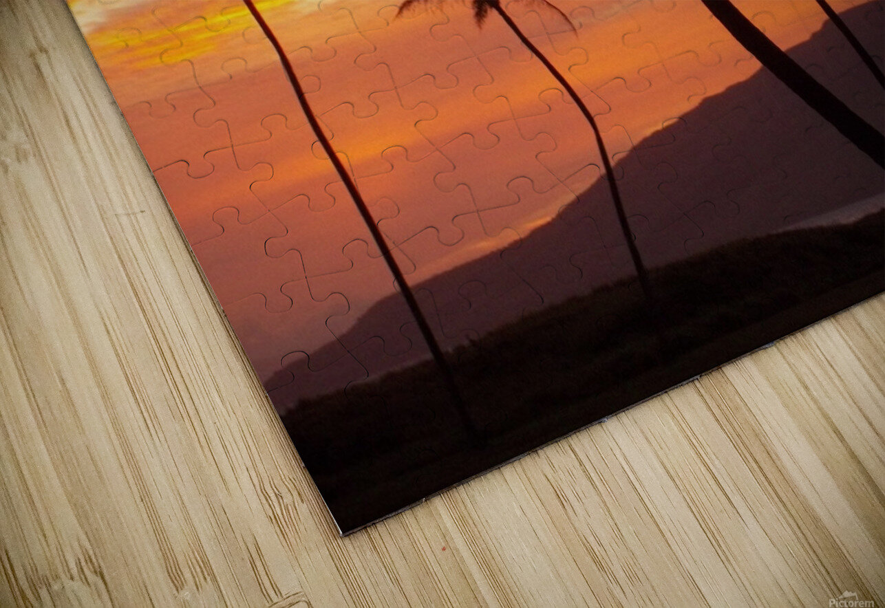 Maui Palms HD Sublimation Metal print