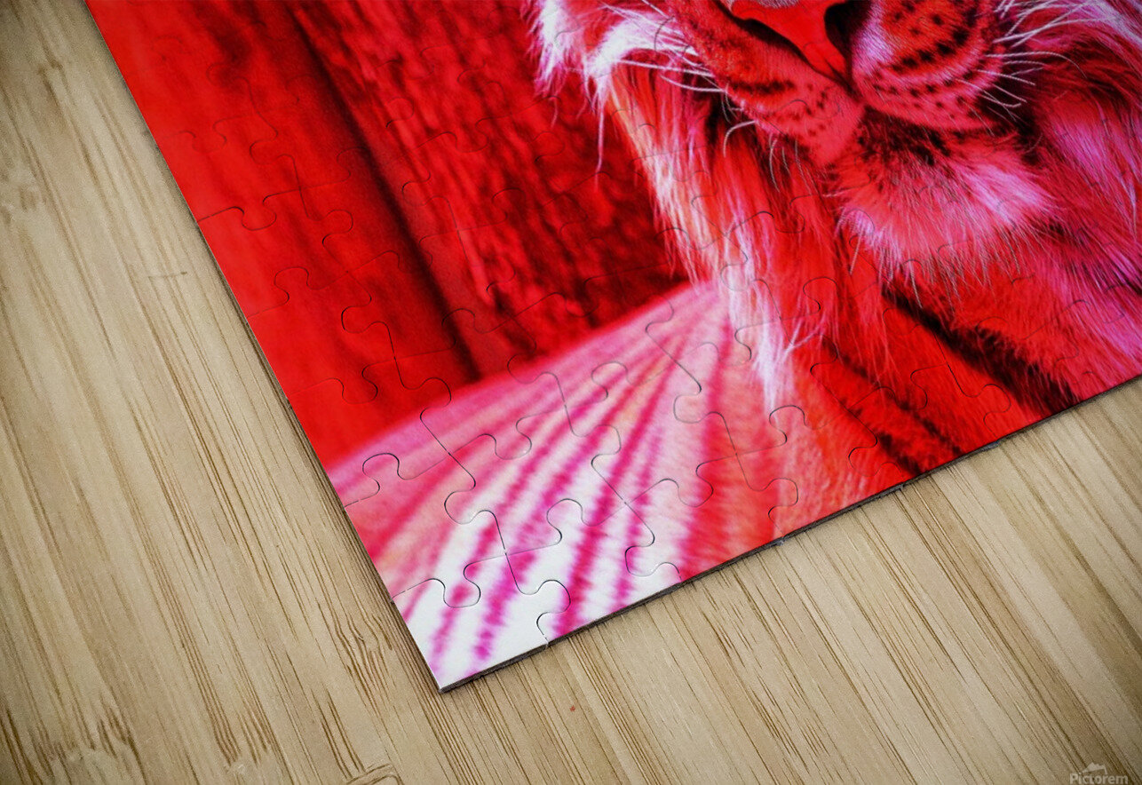 Rare Red Tiger HD Sublimation Metal print