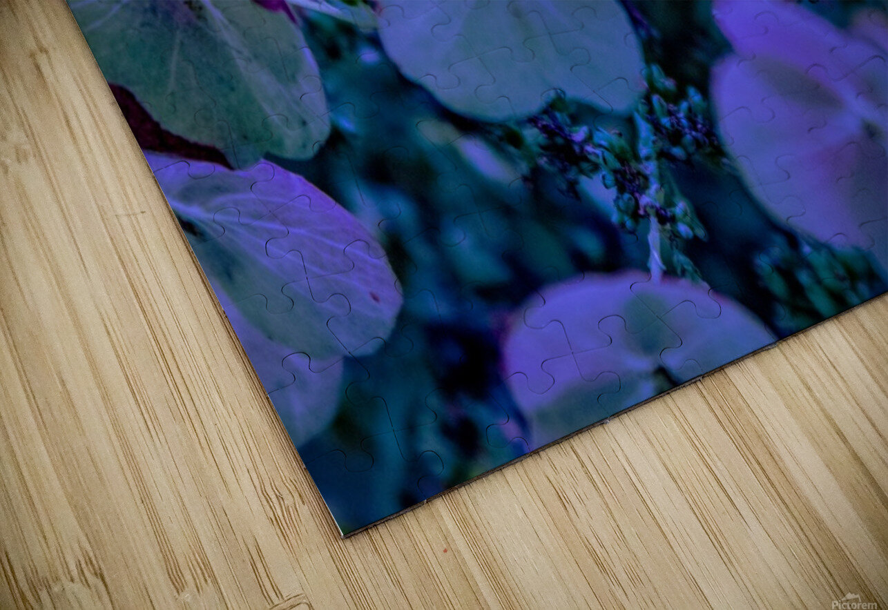 IMG_2616 HD Sublimation Metal print