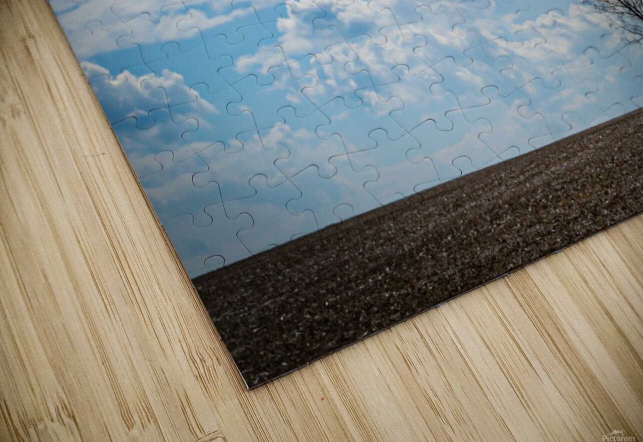 Alone With My Thoughts HD Sublimation Metal print