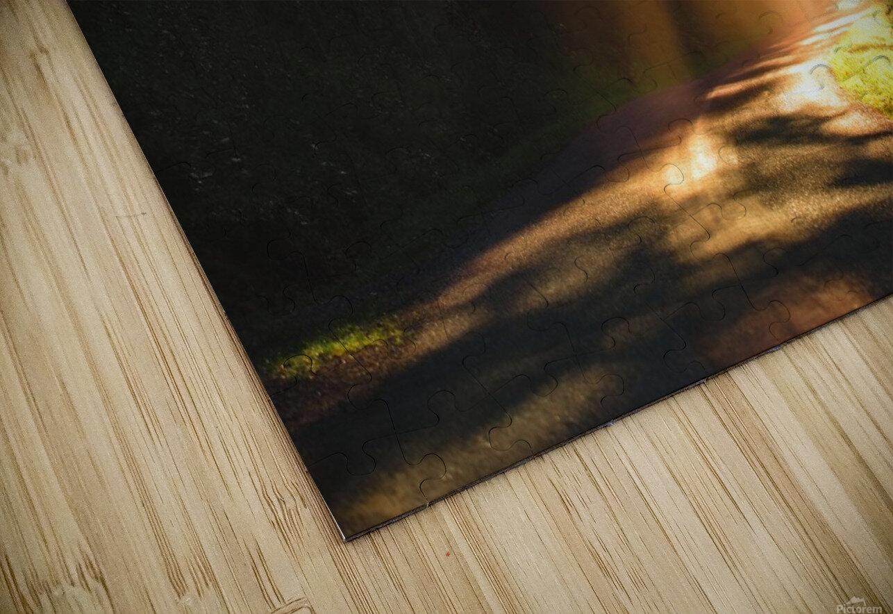 Morning Rays HD Sublimation Metal print